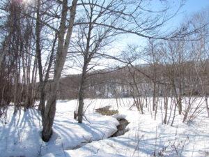 まだまだ雪のこる西岡公園