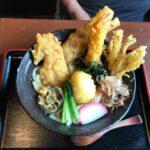 ニセコ方面へ竹の子を採りに行った帰りに京極町「名水うどん 野々傘」でうどんを食べてる